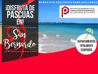 portada-sanbernardo-pascuas